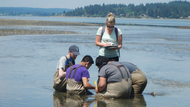 The Perfect Field Day at Mud Bay!