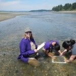 Wet students and prof sampling in water.