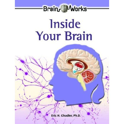 Neuroscience for Kids - Neuroscience Book Reviews