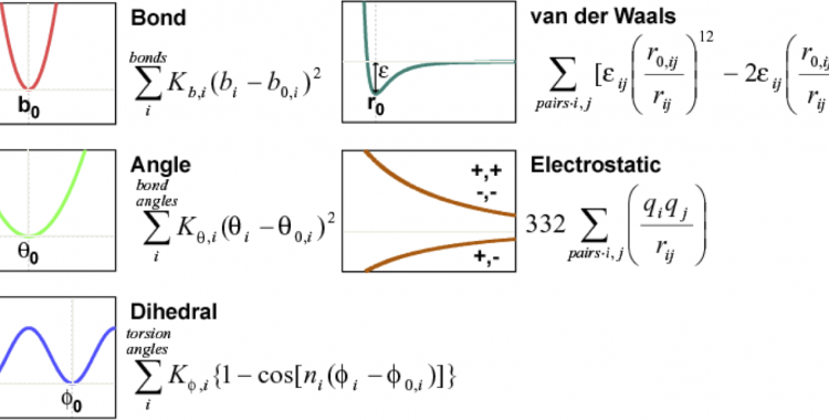 Molecular simulation & analysis