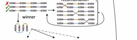 Modular bio-inspired design