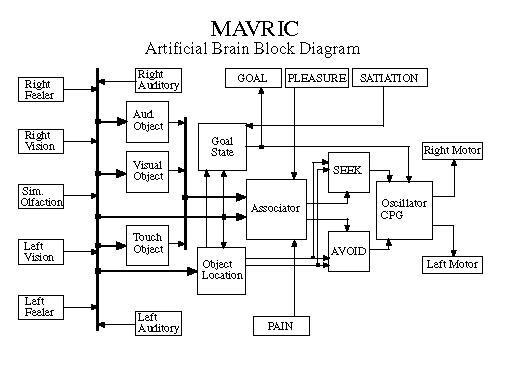 mavric u0026 39 s brain
