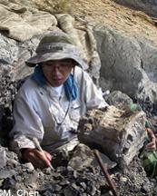Meng Chen smallB