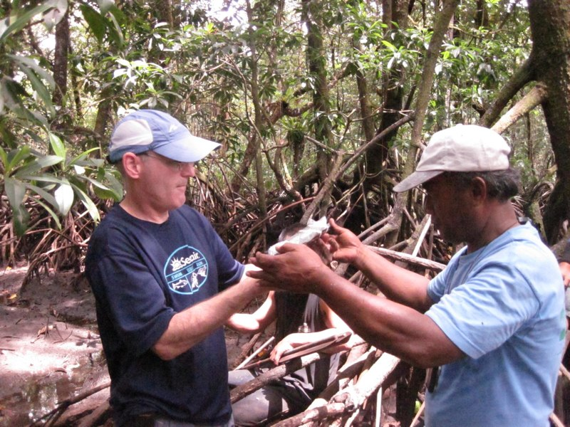 ttp://faculty.washington.edu/jsachs/lab/www/Research/FSM_and_Guam_2012/Pohnpei_Photos_files/Media/IMG_7671/IMG_7671.jpg