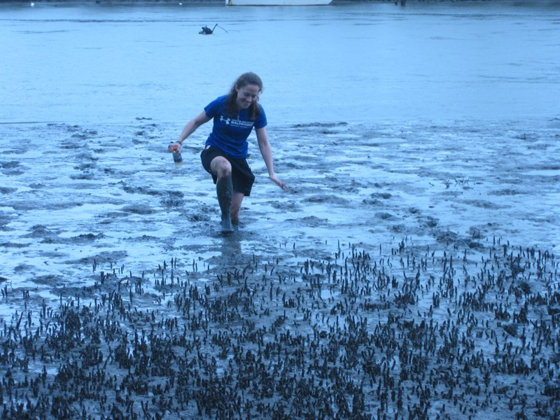 ttp://faculty.washington.edu/jsachs/lab/www/Research/Nauru_Brisbane_2010/links/Muddy Nemiah.jpg