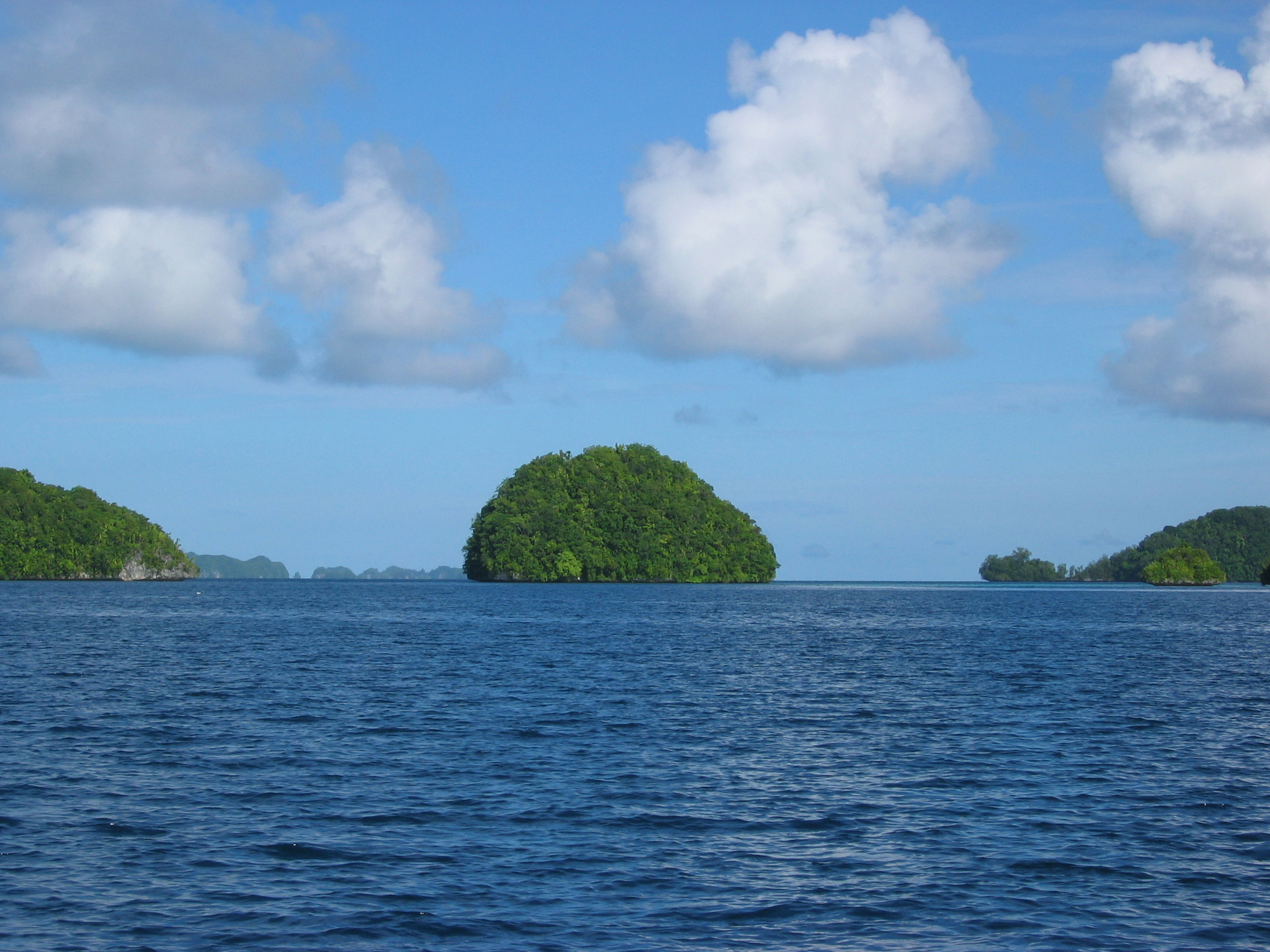 ttp://faculty.washington.edu/jsachs/lab/www/Research/Palau_Expedition_2004/LITTLEIS.JPG