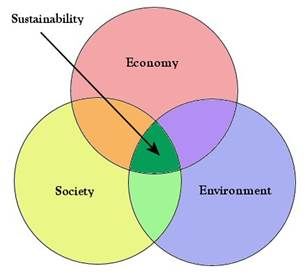 operationalize sustainability essay The basis for a sustainable business model for psos that will provide a  foundation upon  this brief essay presents our first attempt to address this issue.