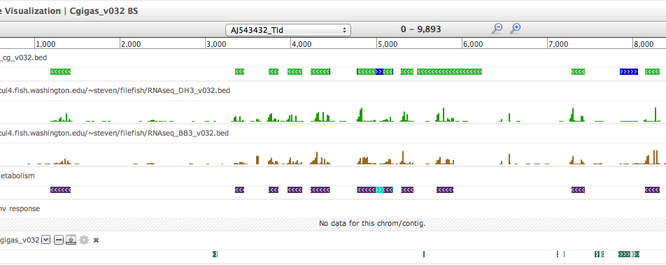 Visualization tracks for the oyster genome