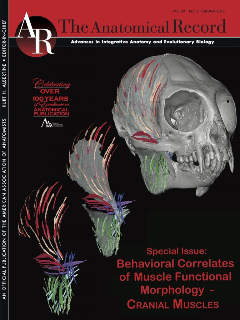 More papers! Behavioral correlates of cranial muscle functional ...